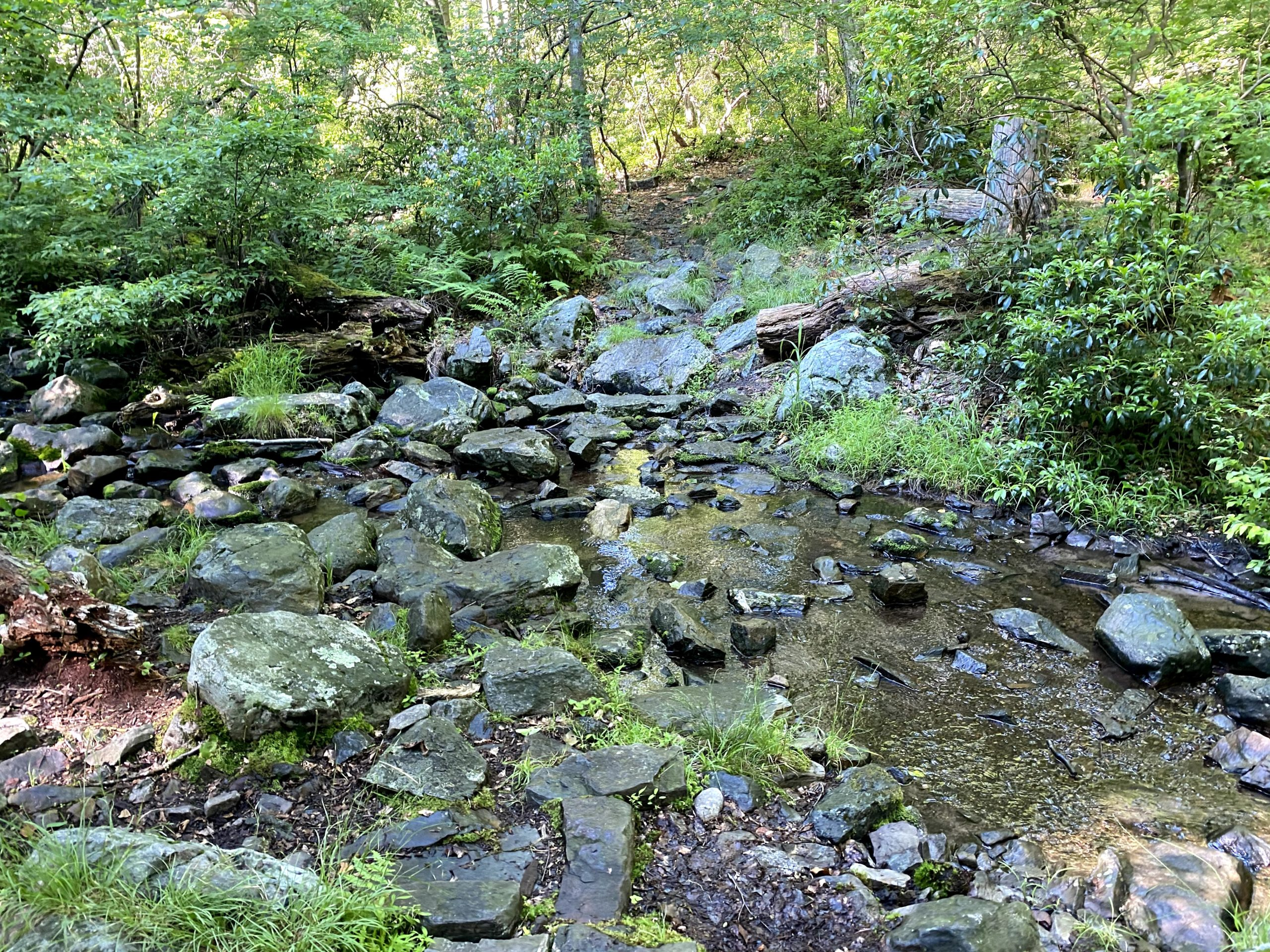 Brook (outlet of Upper Yards Reservoir)