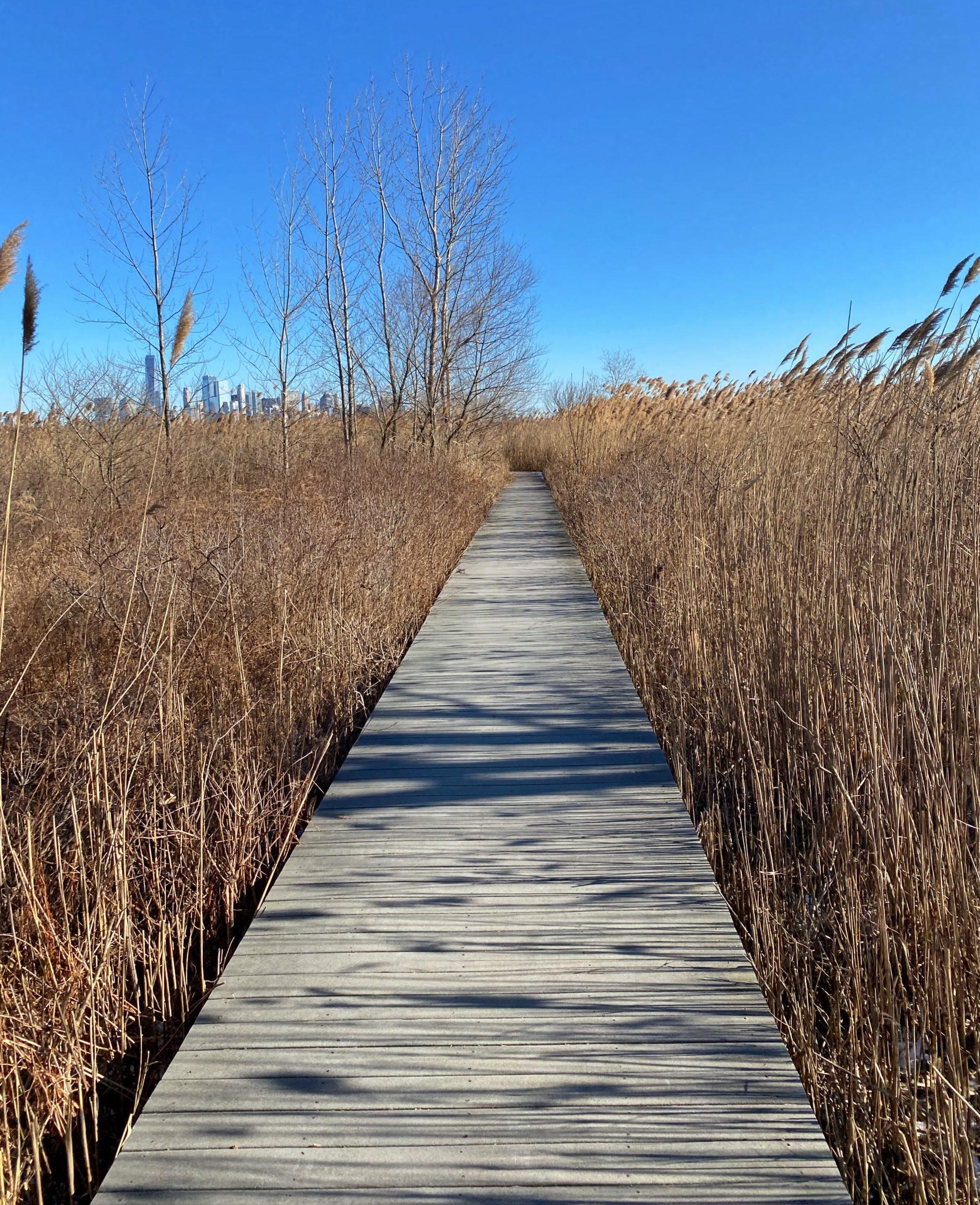 Caven Point boardwalk