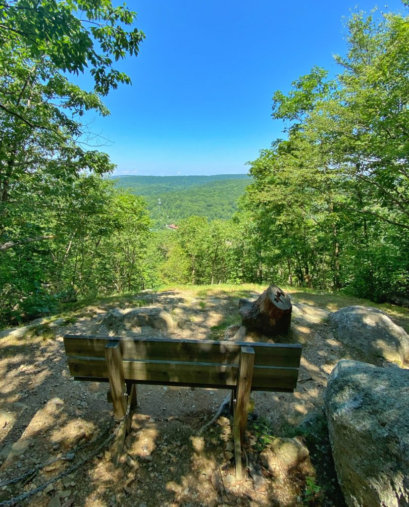 View from the blue trail