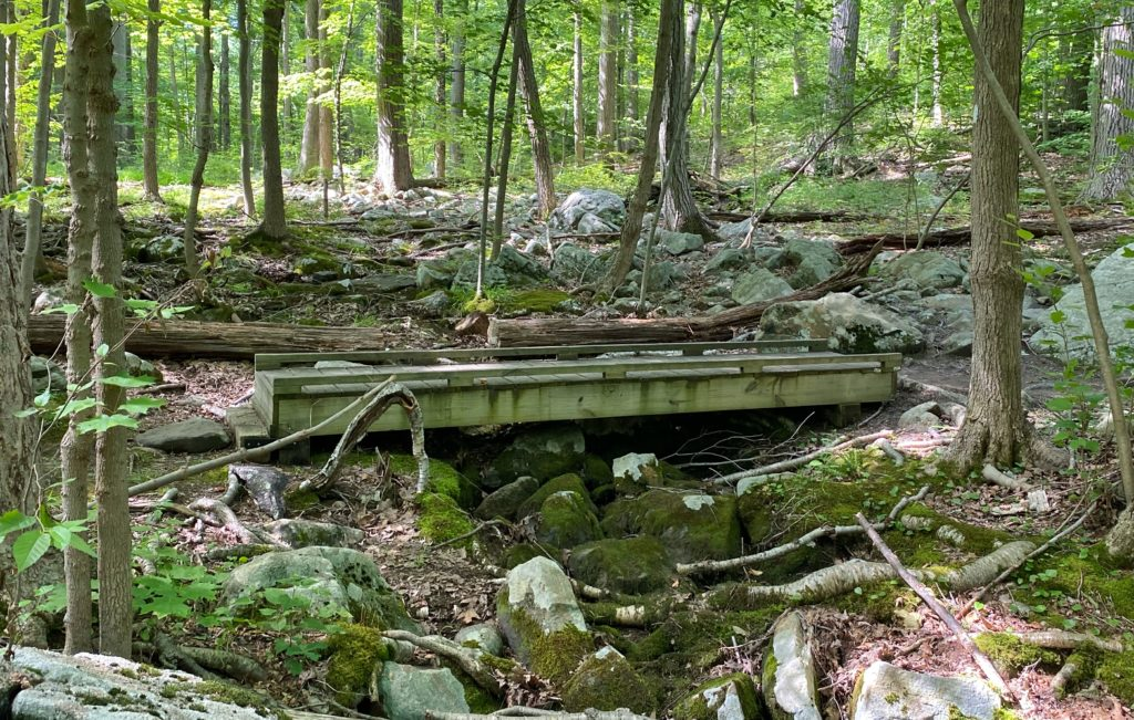 Bridge in Silas Condict County Park