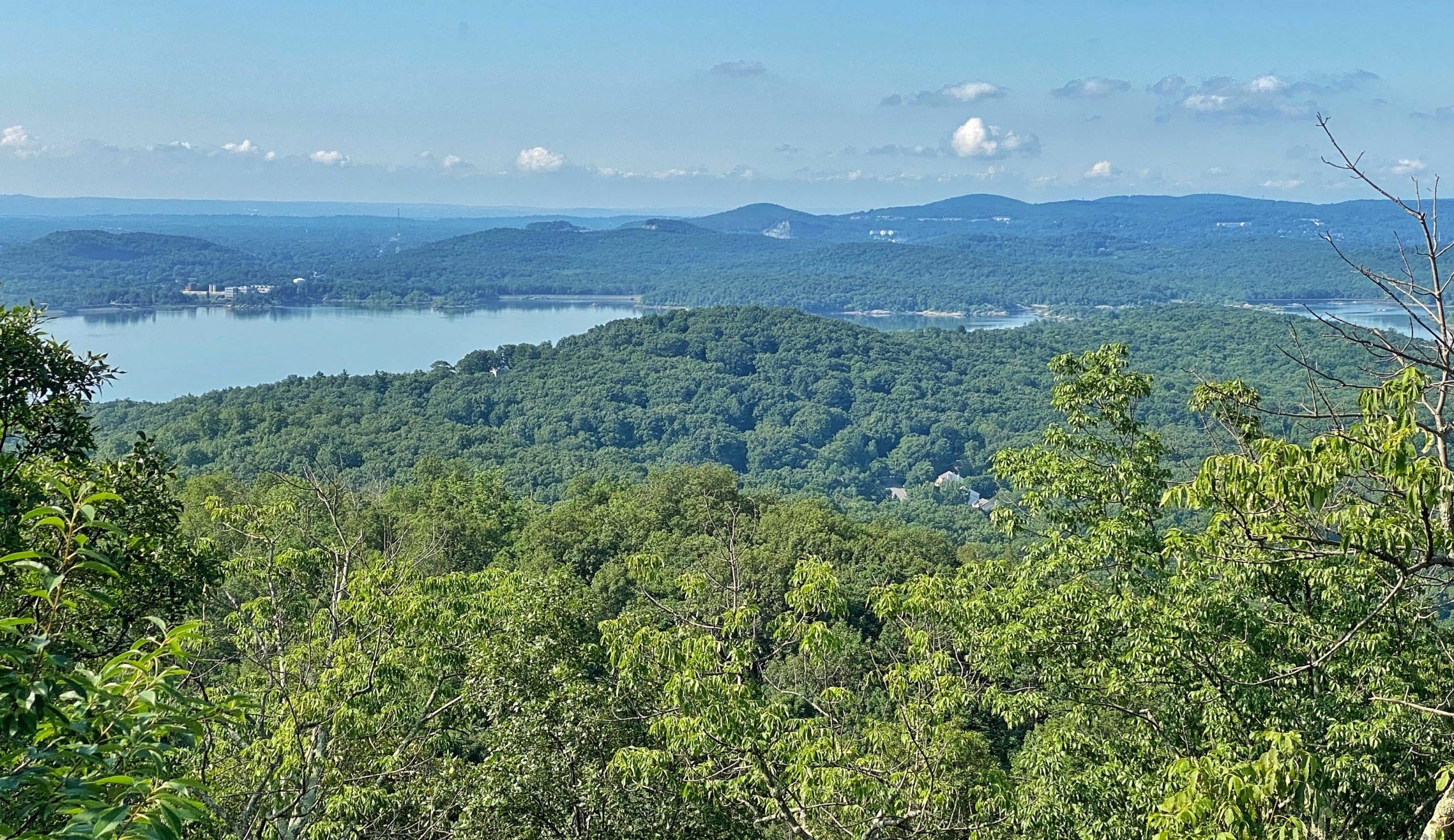 View southeast from Windbeam Mountain