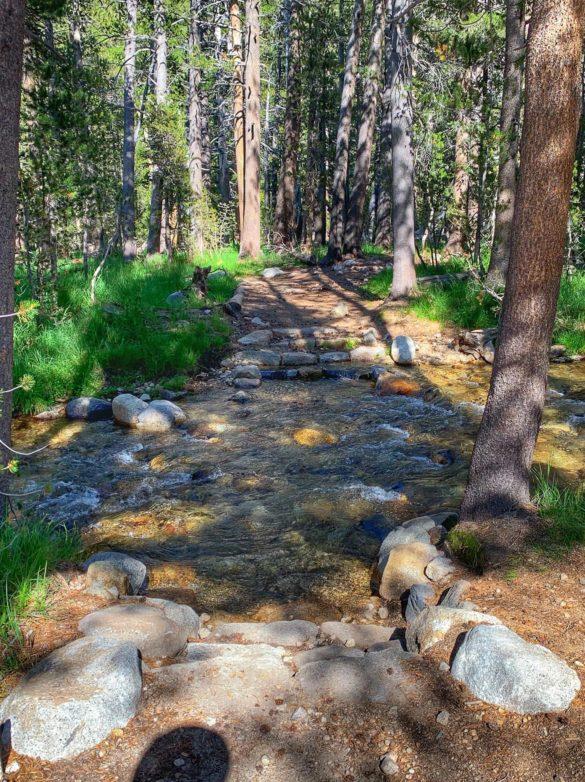 Trail crossing at Ireland Creek