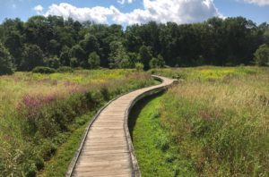 Pochuck Boardwalk is one of the most unique trails in the state.